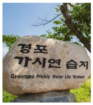 gyeongpodae Wetland Park